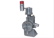 Williams WILROY Series Hydraulically Diaphragm Pumps